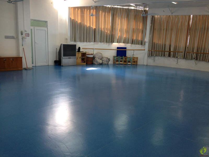 舞蹈地胶——杨霓虹舞蹈教育成功案例