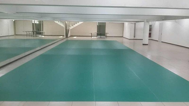 北京总参7局乒乓球室成功案例