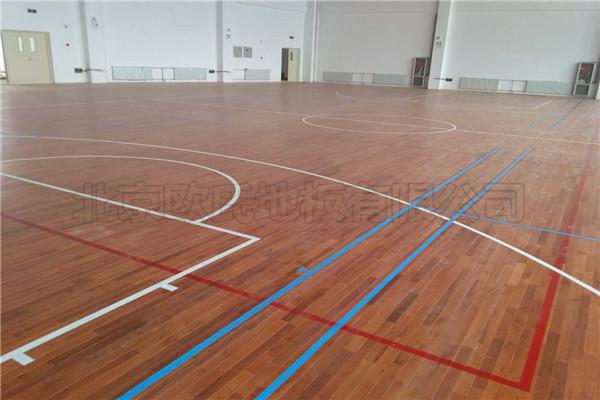 枫木独条运动木地板--甘肃省金昌市第五中学新校区案例